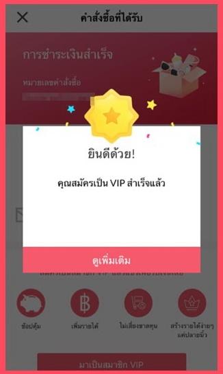 ยินดีด้วย คุณสมัครเป็น VIP Youpik สำเร็จแล้ว